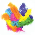 Plumes colorées assorties 10 g