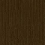 Bazzill Paper - Pinecone