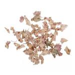 Pétale de rose séchés 5 g